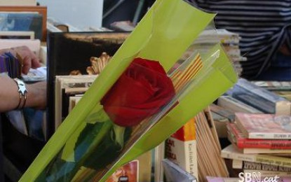Diada de Sant Jordi a Sant Boi