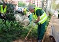 Reforç per a tasques de jardineria i millora de l'espai públic