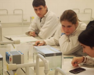 Quinze alumnes de Sant Boi participen al projecte Mart XXI